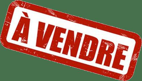 Site prêt à l'emploi à vendre sur Cnathalie.com
